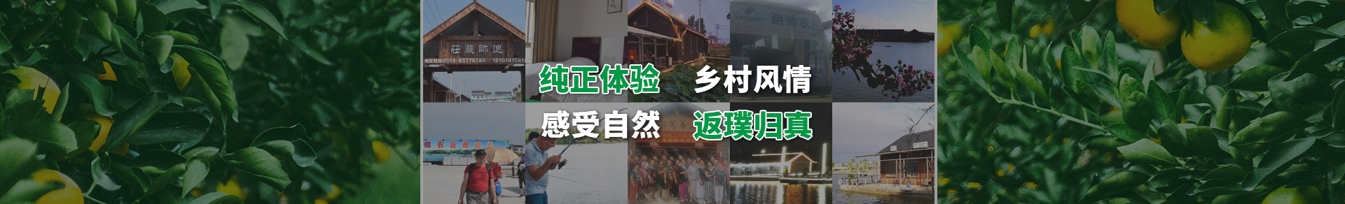 http://www.ntdsnz.cn/data/upload/201910/20191022151531_911.jpg